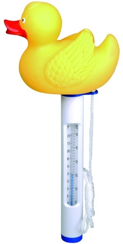 Pool Thermometer Ente